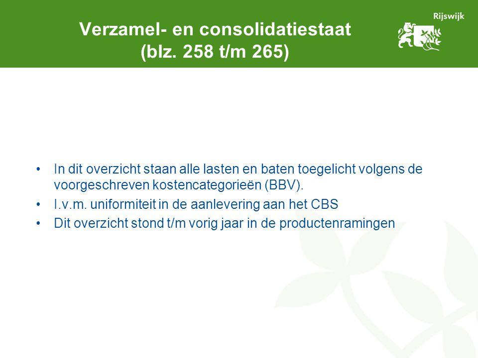 Verzamel- en consolidatiestaat (blz. 258 t/m 265) In dit overzicht staan alle lasten en baten toegelicht volgens de voorgeschreven kostencategorieën (