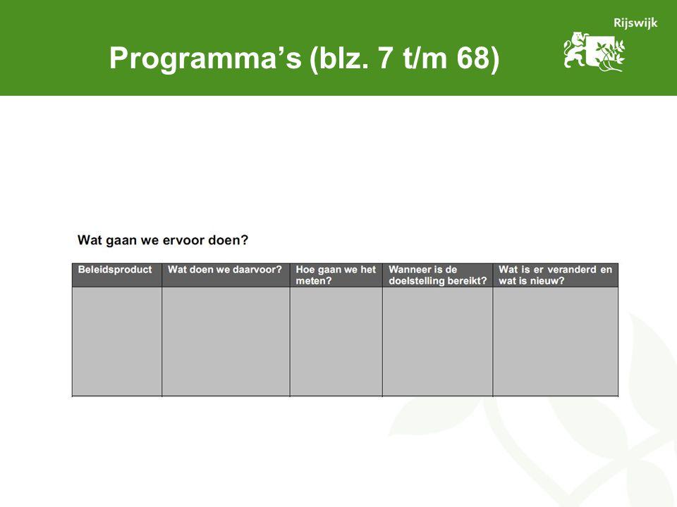 Programmabegroting 2013 (blz.
