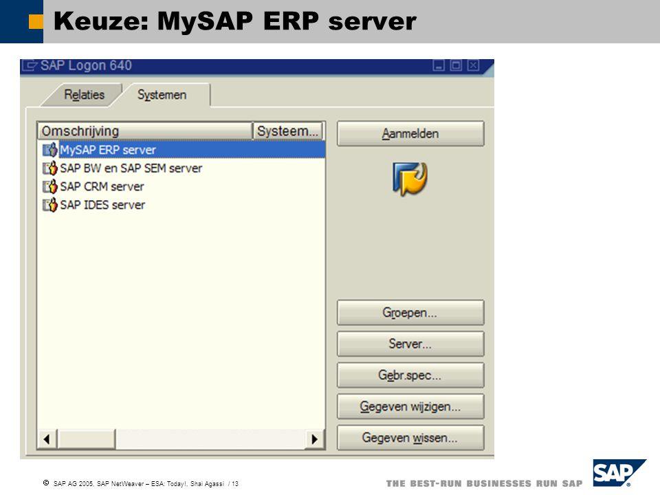  SAP AG 2005, SAP NetWeaver – ESA: Today!, Shai Agassi / 13 Keuze: MySAP ERP server