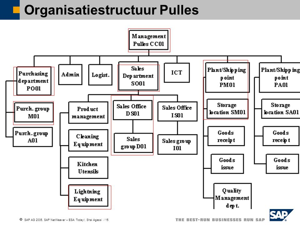  SAP AG 2005, SAP NetWeaver – ESA: Today!, Shai Agassi / 15 Organisatiestructuur Pulles