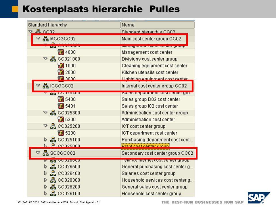  SAP AG 2005, SAP NetWeaver – ESA: Today!, Shai Agassi / 31 Kostenplaats hierarchie Pulles
