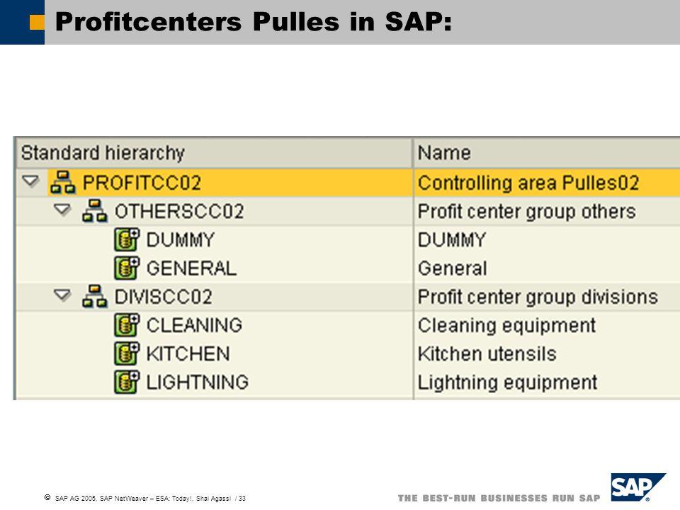  SAP AG 2005, SAP NetWeaver – ESA: Today!, Shai Agassi / 33 Profitcenters Pulles in SAP: