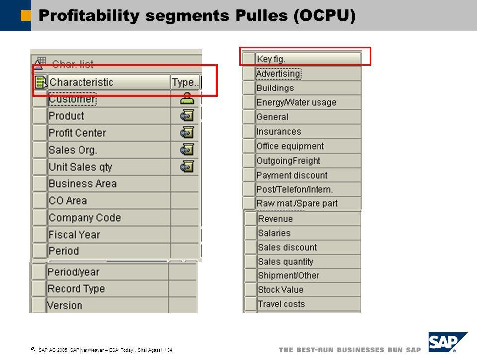  SAP AG 2005, SAP NetWeaver – ESA: Today!, Shai Agassi / 34 Profitability segments Pulles (OCPU)