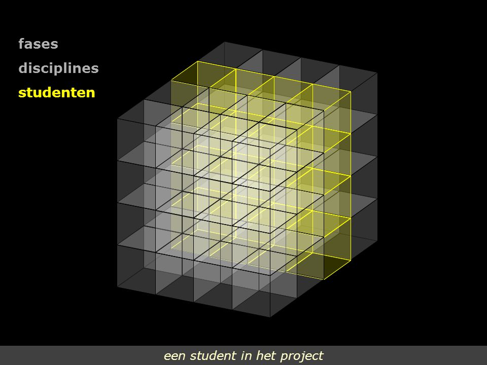 fases disciplines studenten een student in het project