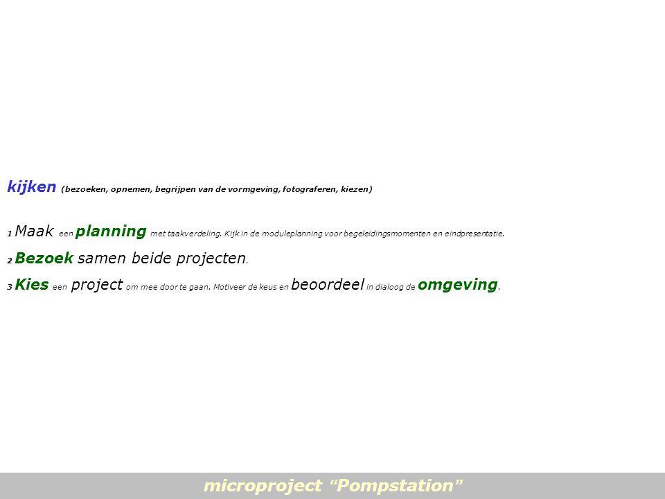 kijken (bezoeken, opnemen, begrijpen van de vormgeving, fotograferen, kiezen) 1 Maak een planning met taakverdeling.