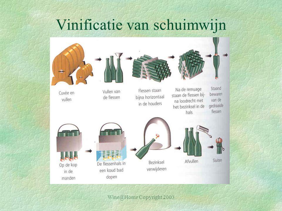 Wine@Home Copyright 2003 Vinificatie van schuimwijn