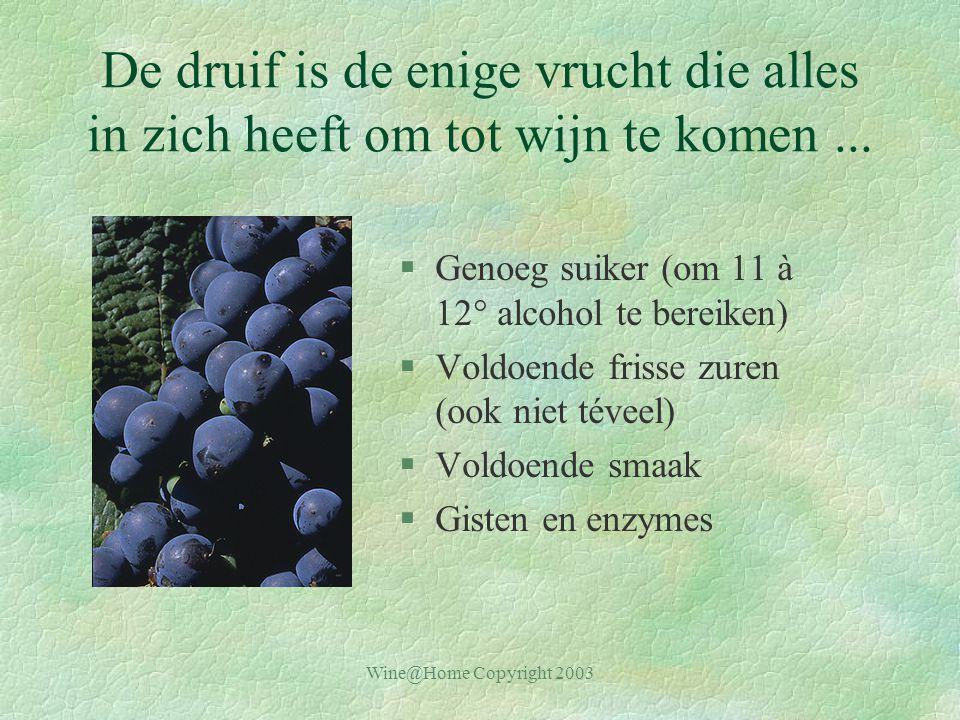 Wine@Home Copyright 2003 De druif is de enige vrucht die alles in zich heeft om tot wijn te komen...