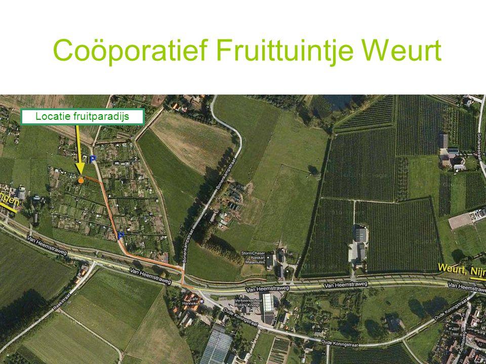 Coöporatief Fruittuintje Weurt Locatie fruitparadijs