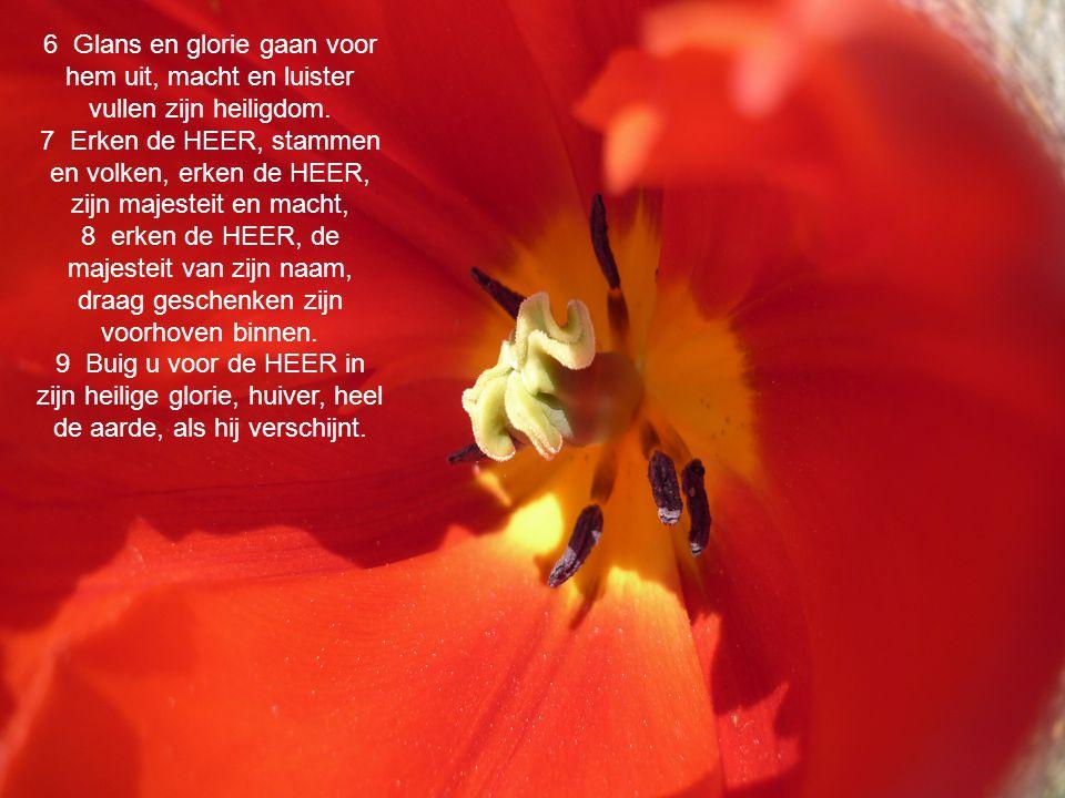 12 Laat het veld verblijd zijn en alles wat daar groeit, laten alle bomen jubelen 13 voor de HEER, want hij is in aantocht, in aantocht is hij als rechter van de aarde.