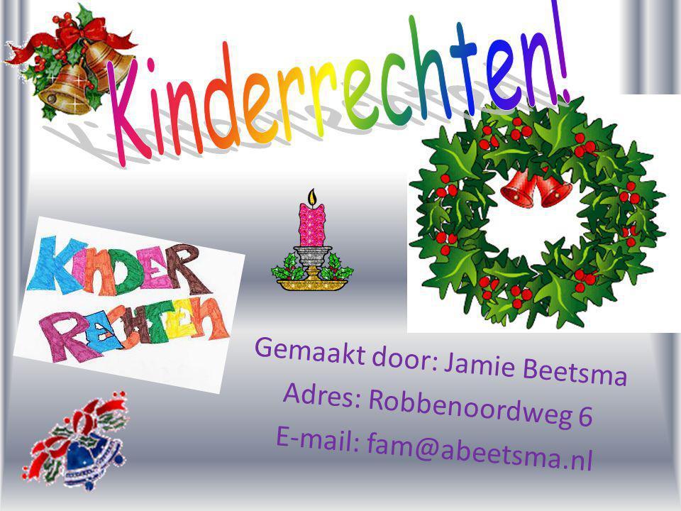 Gemaakt door: Jamie Beetsma Adres: Robbenoordweg 6 E-mail: fam@abeetsma.nl