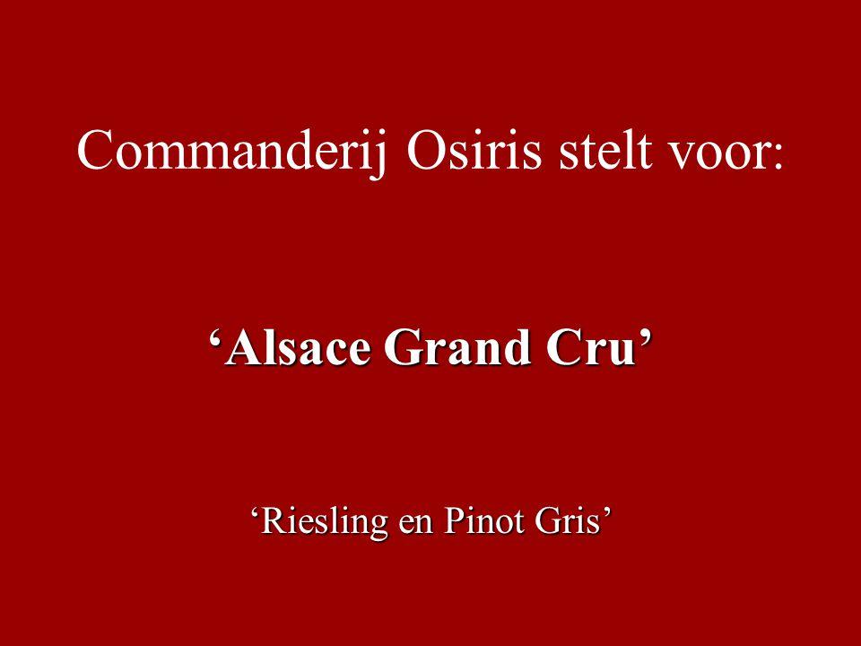 Commanderij Osiris stelt voor : 'Alsace Grand Cru' 'Riesling en Pinot Gris'