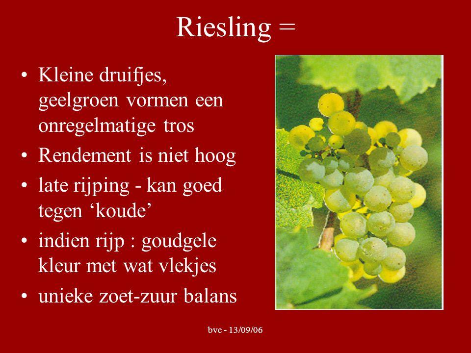 bvc - 13/09/06 Riesling = Kleine druifjes, geelgroen vormen een onregelmatige tros Rendement is niet hoog late rijping - kan goed tegen 'koude' indien