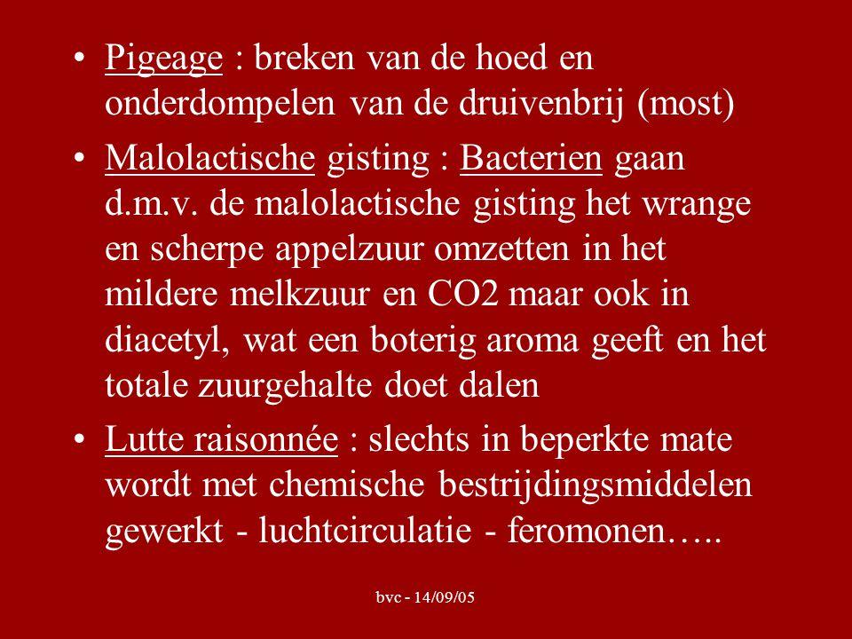 bvc - 14/09/05 Pigeage : breken van de hoed en onderdompelen van de druivenbrij (most) Malolactische gisting : Bacterien gaan d.m.v.