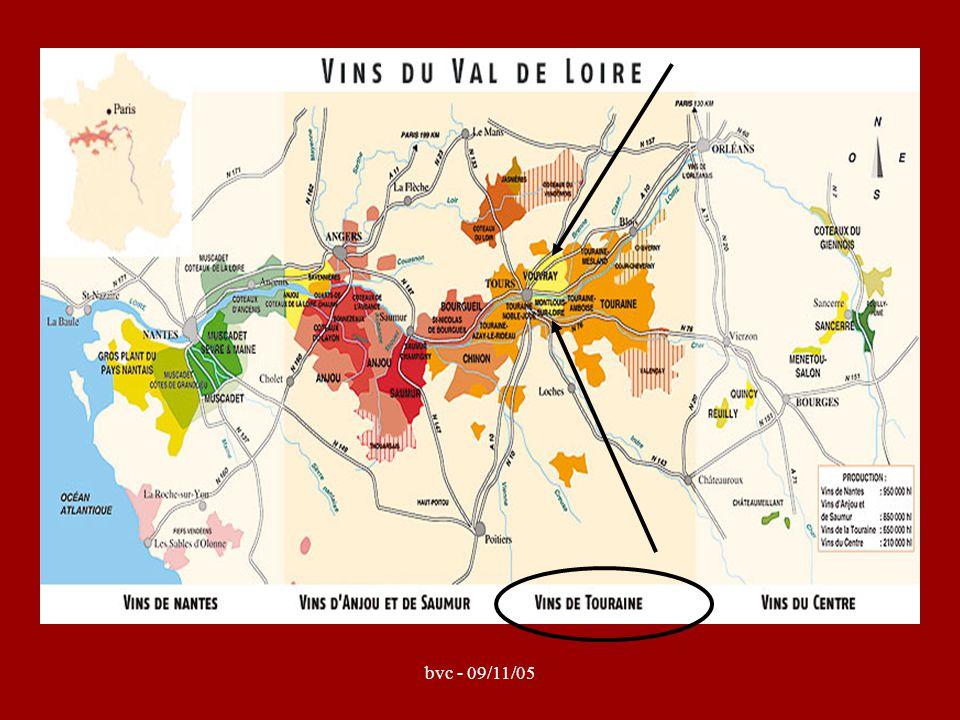 Vouvray / Montlouis = Chenin Blanc Van origine uit de Loire Pineau de la Loire / Plant d'Anjou / Steen (Zuid-Afrika) sec / demi-sec / moelleux