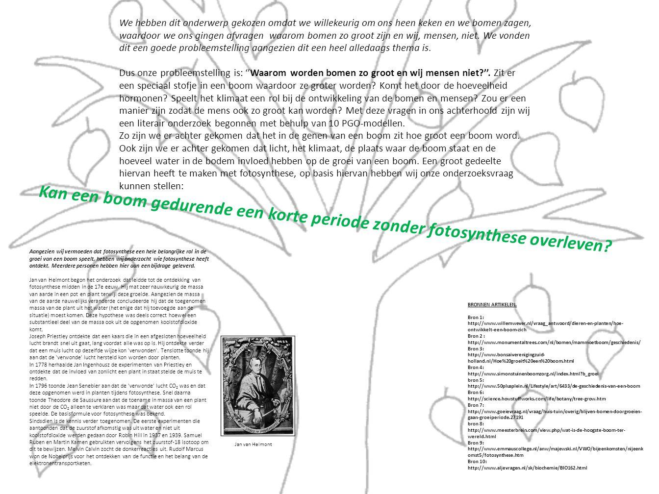 Aangezien wij vermoeden dat fotosynthese een hele belangrijke rol in de groei van een boom speelt, hebben wij onderzocht wie fotosynthese heeft ontdekt.