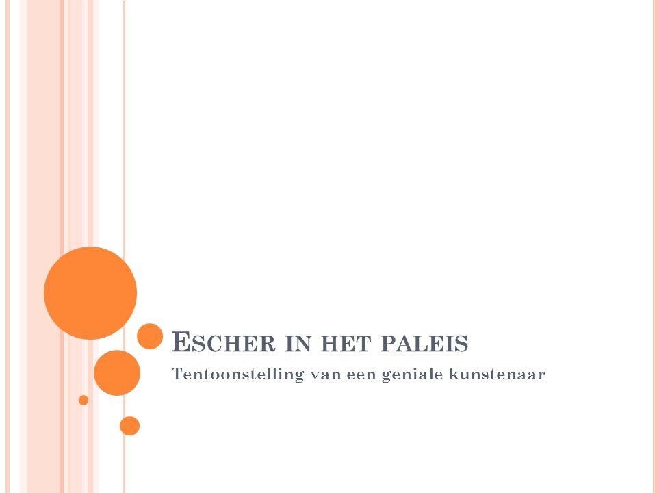 W ANNEER WIE WAT WAAR Vrijdag 3 januari ben ik samen met mijn vriendin naar Den Haag gereisd om naar Het Paleis te gaan waar voor de laatste dag het werk van Escher tentoon gesteld zou staan