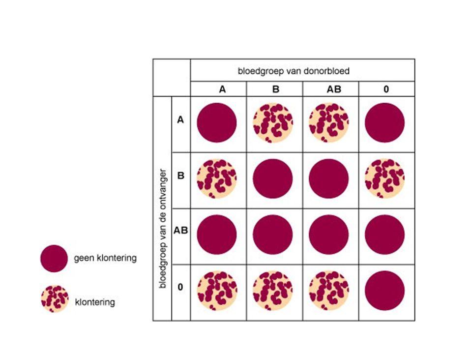 Bloedgroep AB = universele acceptor want heeft als acceptor geen antistoffen geen agglutinatie Bloedgroep O = universele donor want heeft als donor geen antigenen geen agglutinatie