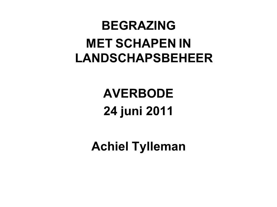 BEGRAZING MET SCHAPEN IN LANDSCHAPSBEHEER AVERBODE 24 juni 2011 Achiel Tylleman