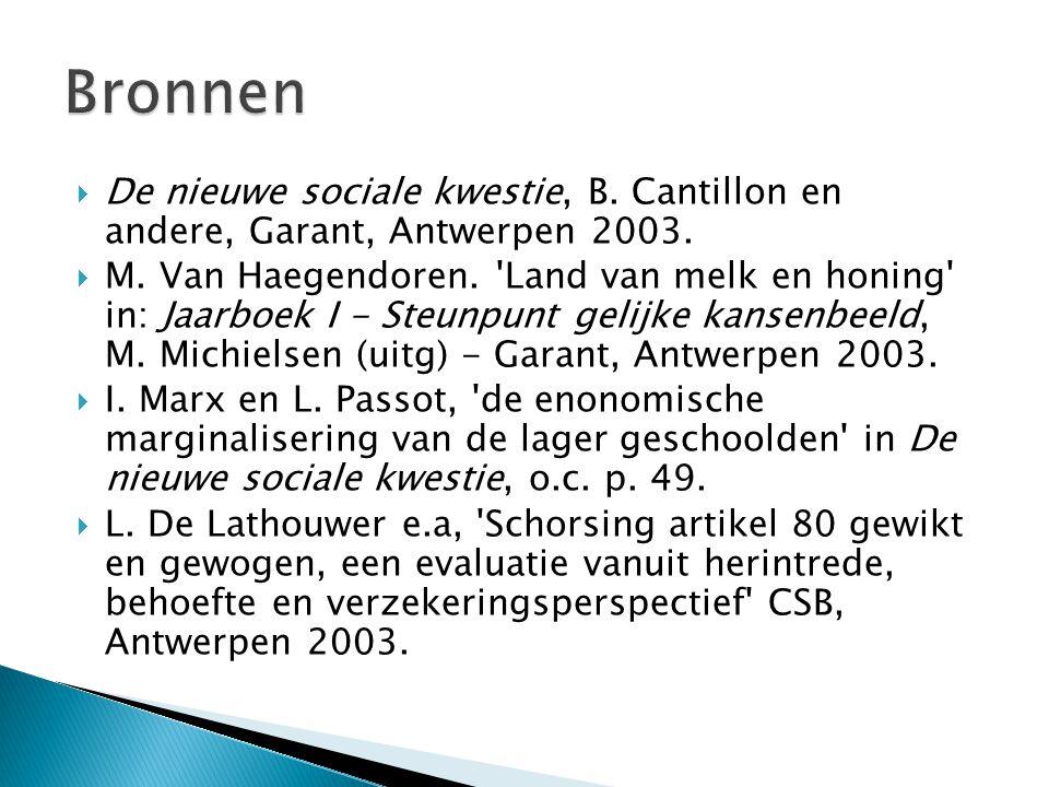  De nieuwe sociale kwestie, B. Cantillon en andere, Garant, Antwerpen 2003.