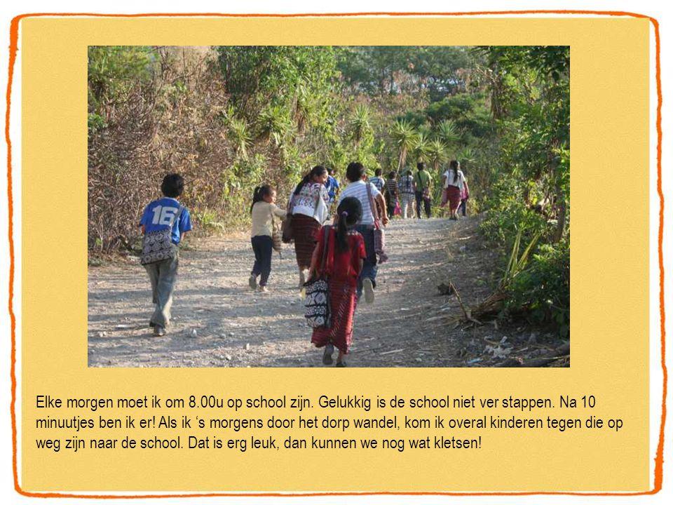 Elke morgen moet ik om 8.00u op school zijn.Gelukkig is de school niet ver stappen.