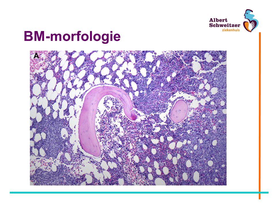 BM-morfologie