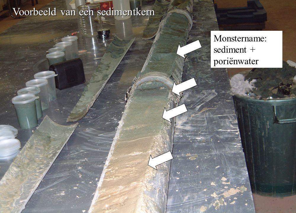 Voorbeeld van een sedimentkern Monstername: sediment + poriënwater