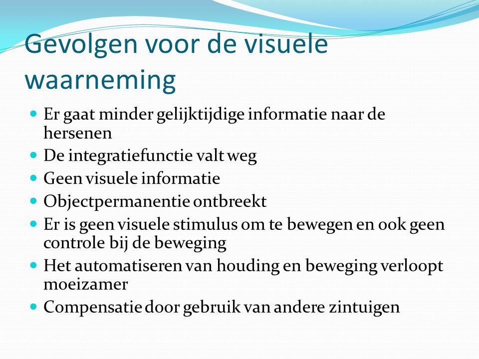 Gevolgen voor de visuele waarneming Er gaat minder gelijktijdige informatie naar de hersenen De integratiefunctie valt weg Geen visuele informatie Obj