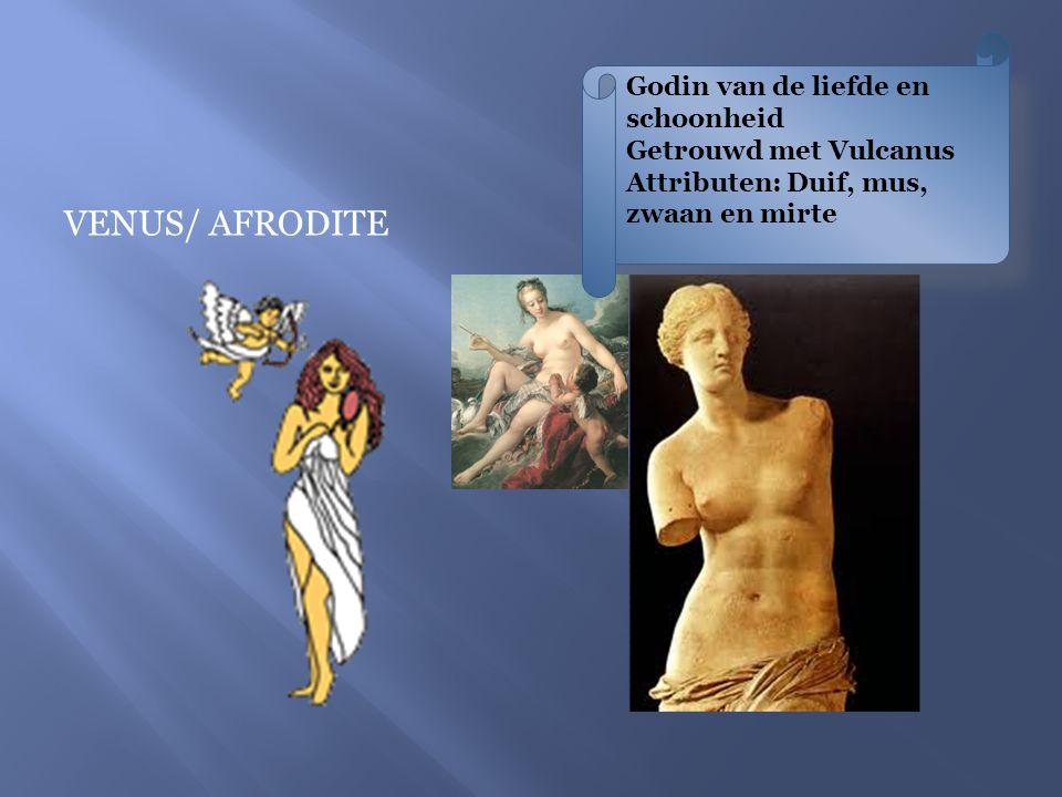 VENUS/ AFRODITE Godin van de liefde en schoonheid Getrouwd met Vulcanus Attributen: Duif, mus, zwaan en mirte