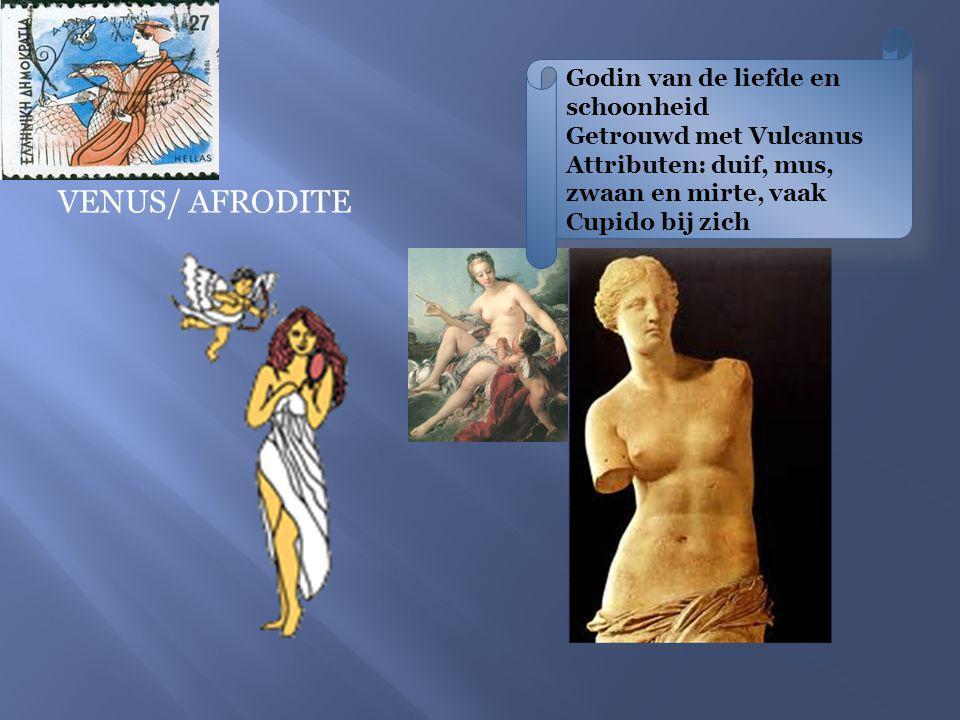 VENUS/ AFRODITE Godin van de liefde en schoonheid Getrouwd met Vulcanus Attributen: duif, mus, zwaan en mirte, vaak Cupido bij zich