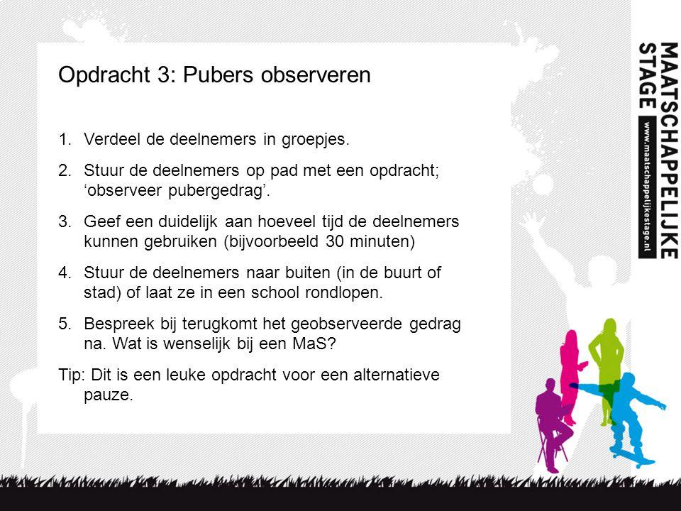 Opdracht 3: Pubers observeren 1.Verdeel de deelnemers in groepjes. 2.Stuur de deelnemers op pad met een opdracht; 'observeer pubergedrag'. 3.Geef een