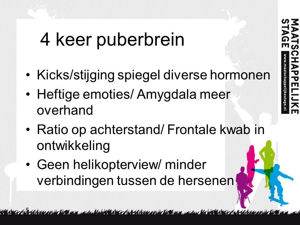 5 4 keer puberbrein Kicks/stijging spiegel diverse hormonen Heftige emoties/ Amygdala meer overhand Ratio op achterstand/ Frontale kwab in ontwikkelin