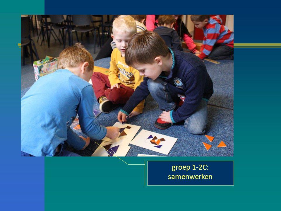 groep 1-2C: samenwerken