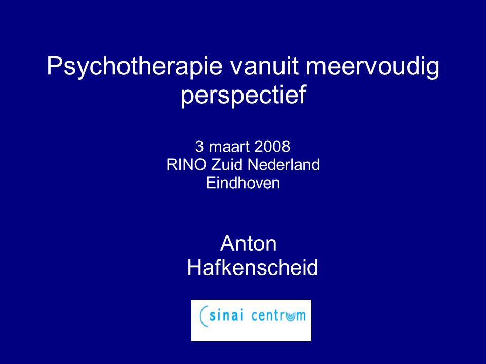 Psychotherapie vanuit meervoudig perspectief 3 maart 2008 RINO Zuid Nederland Eindhoven Anton Hafkenscheid