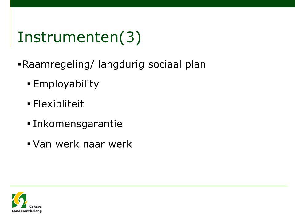 Instrumenten(3)  Raamregeling/ langdurig sociaal plan  Employability  Flexibliteit  Inkomensgarantie  Van werk naar werk