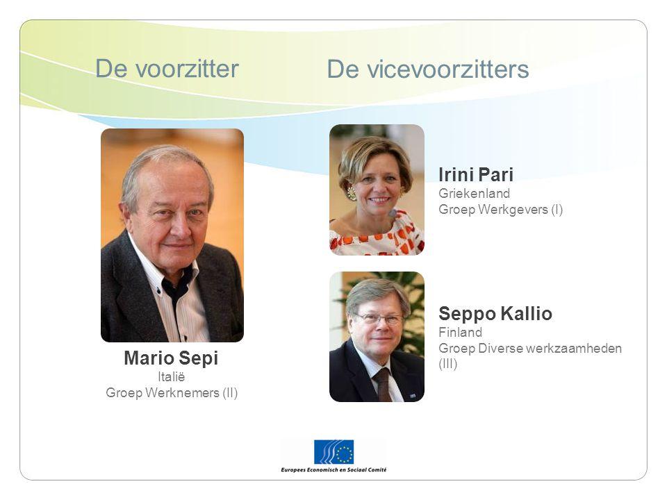 De voorzitter De vicevoorzitters Mario Sepi Italië Groep Werknemers (II) Irini Pari Griekenland Groep Werkgevers (I) Seppo Kallio Finland Groep Diverse werkzaamheden (III)