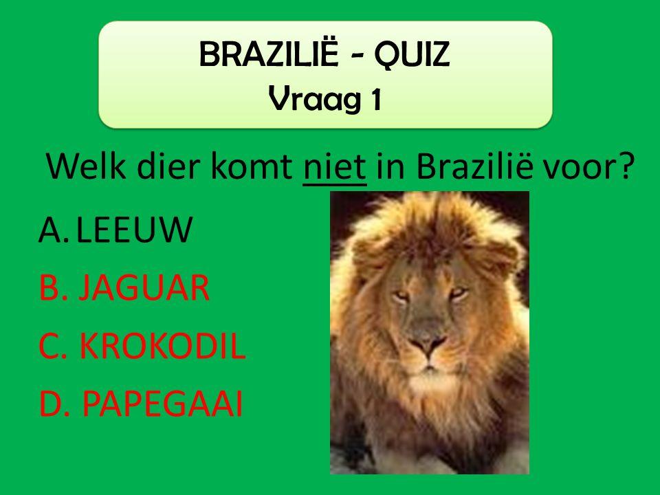 A.LEEUW B. JAGUAR C. KROKODIL D. PAPEGAAI BRAZILIË - QUIZ Vraag 1 Welk dier komt niet in Brazilië voor?