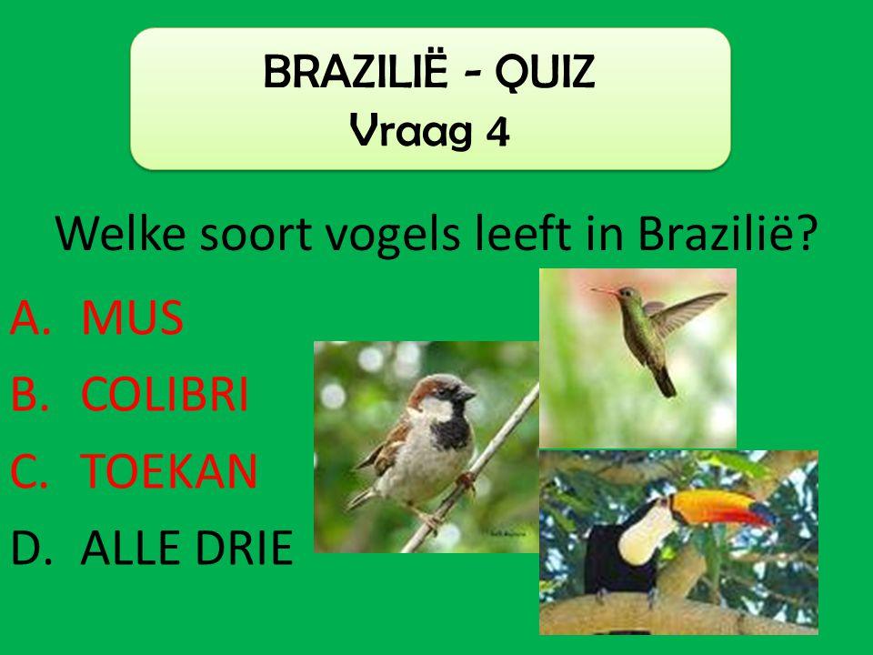 A.MUS B.COLIBRI C.TOEKAN D.ALLE DRIE BRAZILIË - QUIZ Vraag 4 Welke soort vogels leeft in Brazilië?