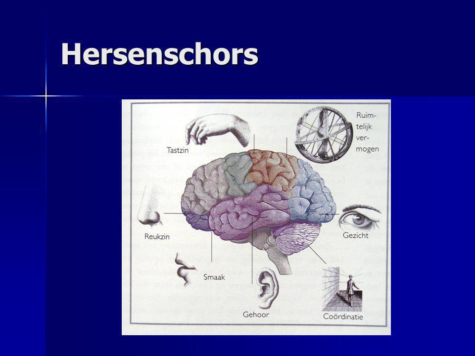 Hersenschors