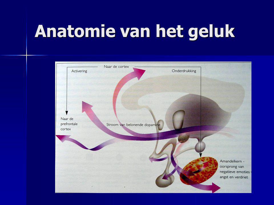 Anatomie van het geluk