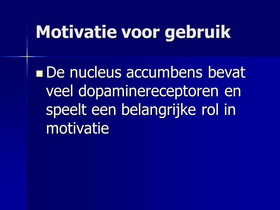 Motivatie voor gebruik De nucleus accumbens bevat veel dopaminereceptoren en speelt een belangrijke rol in motivatie De nucleus accumbens bevat veel d