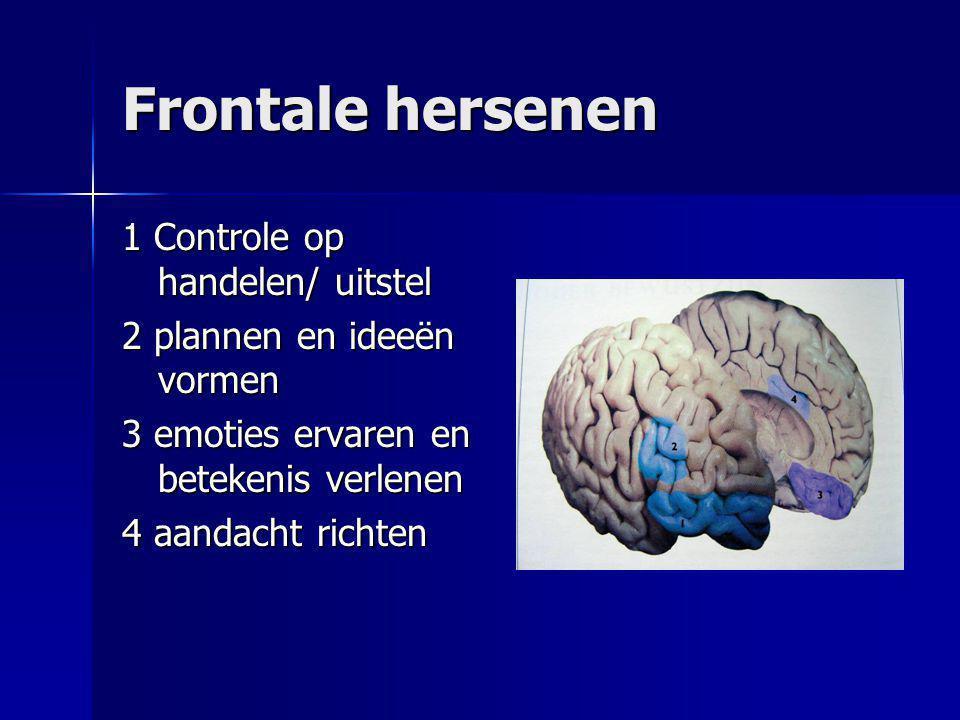 Frontale hersenen 1 Controle op handelen/ uitstel 2 plannen en ideeën vormen 3 emoties ervaren en betekenis verlenen 4 aandacht richten