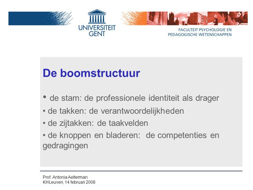 De boomstructuur de stam: de professionele identiteit als drager de takken: de verantwoordelijkheden de zijtakken: de taakvelden de knoppen en bladeren: de competenties en gedragingen Prof.