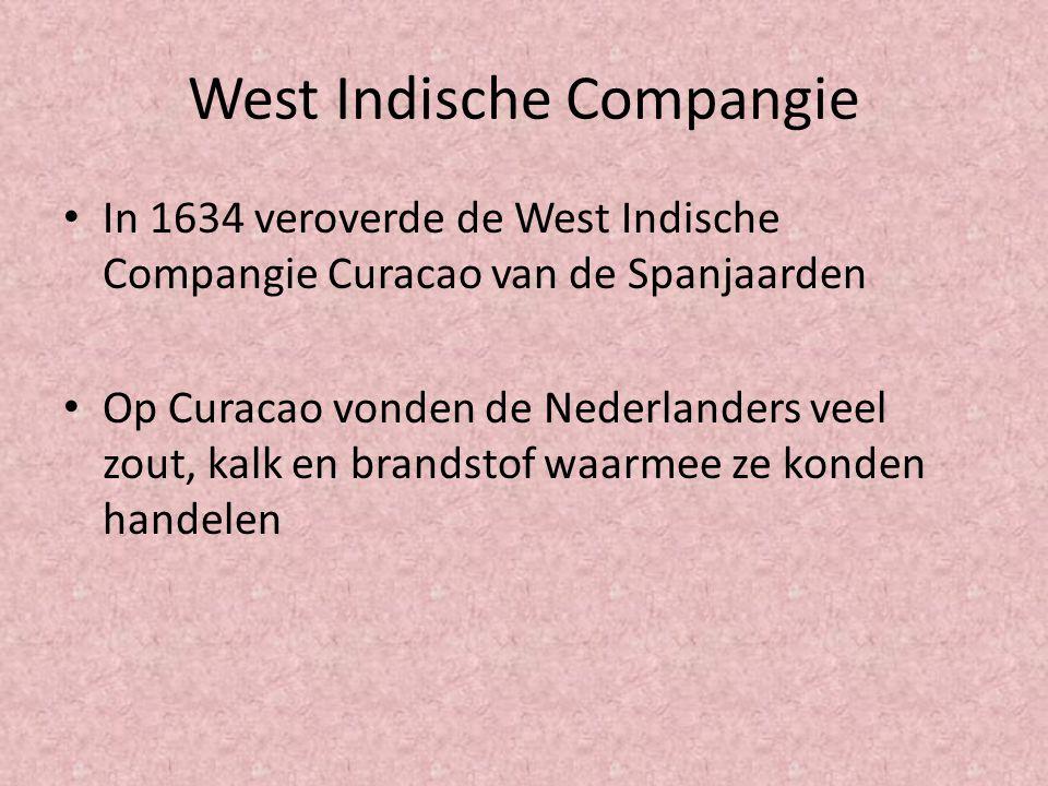 West Indische Compangie In 1634 veroverde de West Indische Compangie Curacao van de Spanjaarden Op Curacao vonden de Nederlanders veel zout, kalk en b