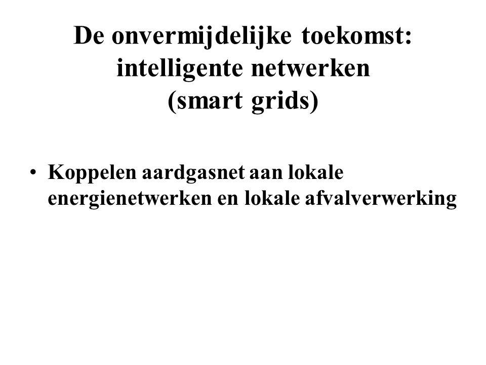De onvermijdelijke toekomst: intelligente netwerken (smart grids) Koppelen aardgasnet aan lokale energienetwerken en lokale afvalverwerking