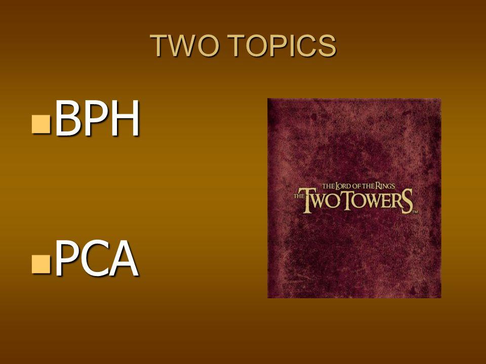 TWO TOPICS BPH BPH PCA PCA