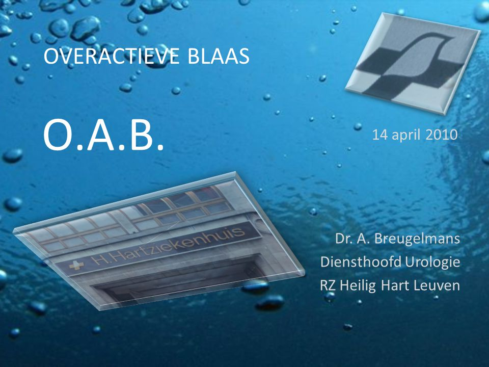 O.A.B. Dr. A. Breugelmans Diensthoofd Urologie RZ Heilig Hart Leuven 14 april 2010 OVERACTIEVE BLAAS