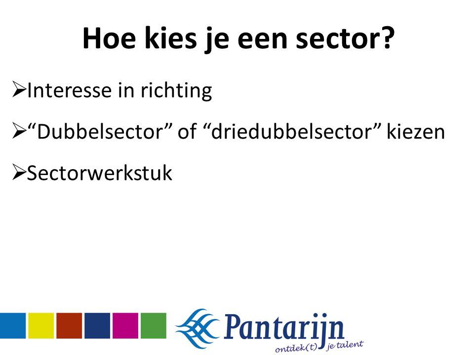 """Hoe kies je een sector?  Interesse in richting  """"Dubbelsector"""" of """"driedubbelsector"""" kiezen  Sectorwerkstuk"""