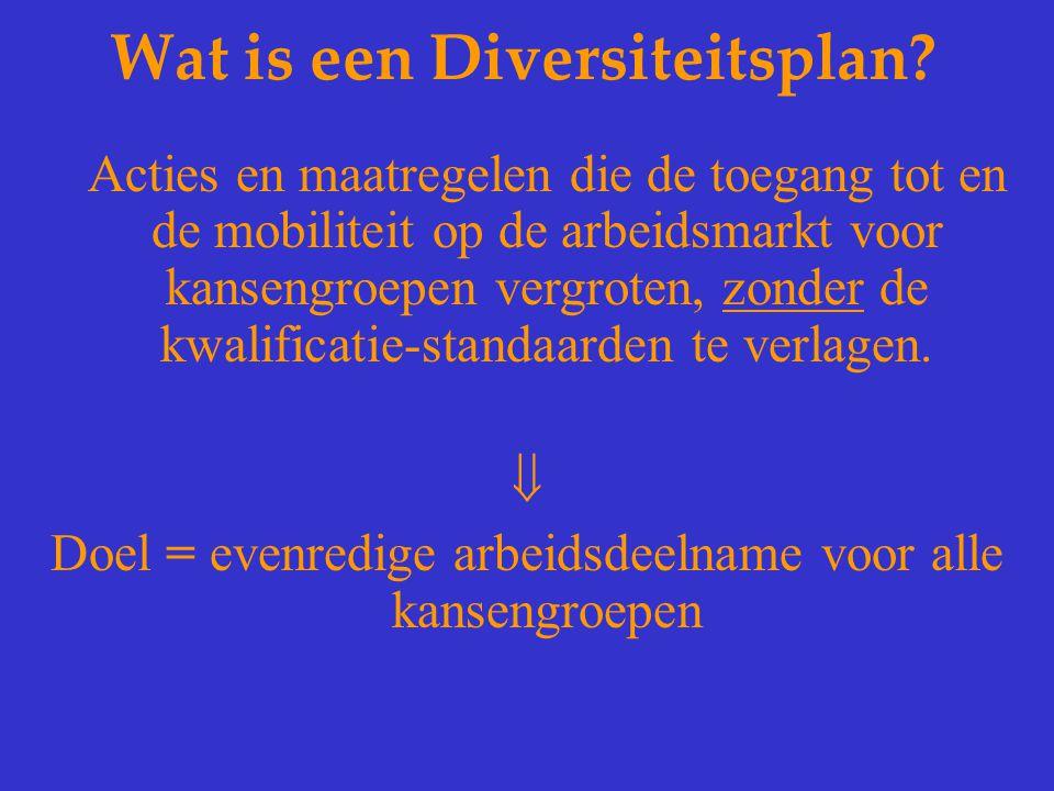 Wat is een Diversiteitsplan? Acties en maatregelen die de toegang tot en de mobiliteit op de arbeidsmarkt voor kansengroepen vergroten, zonder de kwal