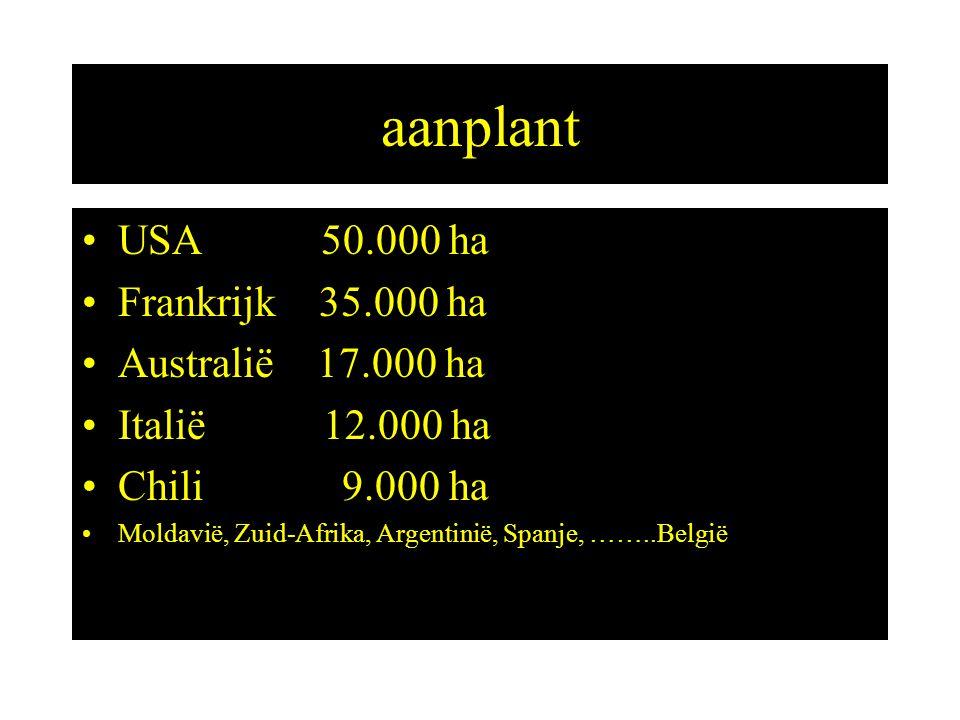 aanplant USA 50.000 ha Frankrijk 35.000 ha Australië 17.000 ha Italië 12.000 ha Chili 9.000 ha Moldavië, Zuid-Afrika, Argentinië, Spanje, ……..België