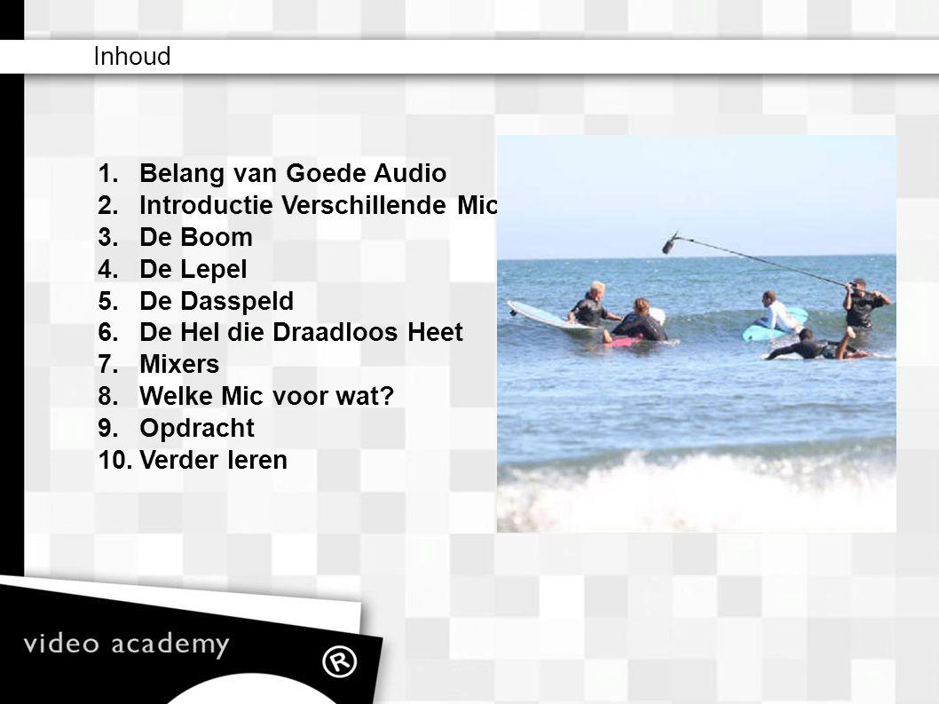 1.Belang van Goede Audio De Camcorder Pro Slechte audio verraad direct de amateur.